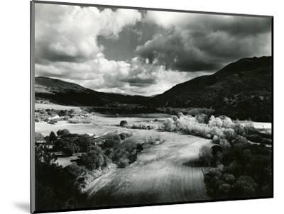 Landscape, Carmel Valley, 1952-Brett Weston-Mounted Photographic Print