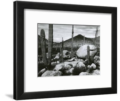 Desert Landscape, Mexico, 1967-Brett Weston-Framed Photographic Print
