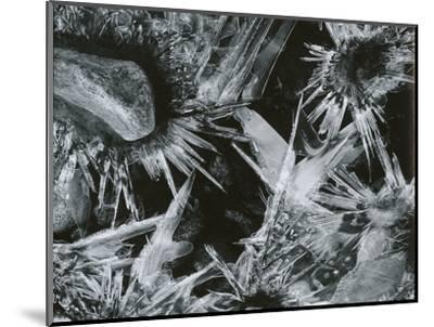 Ice and Rock, c. 1970-Brett Weston-Mounted Photographic Print
