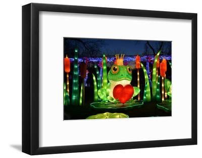 Winter Lantern Festival, Frog and Heart, 2018-Anthony Butera-Framed Photographic Print