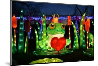 Winter Lantern Festival, Frog and Heart, 2018-Anthony Butera-Mounted Photographic Print