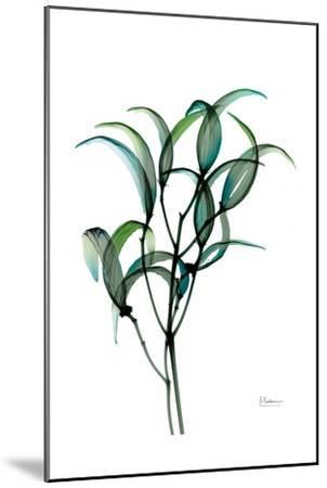Shimmering Botanical 1-Albert Koetsier-Mounted Art Print