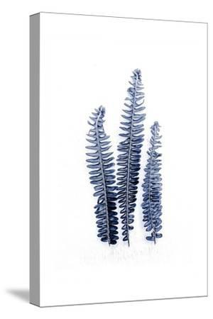Fern Fronds Navy-Urban Epiphany-Stretched Canvas Print