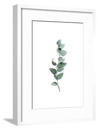 Tender Leaves 3-Urban Epiphany-Framed Art Print
