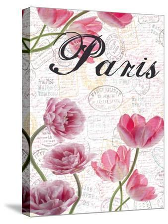 All Things Paris 5-Sheldon Lewis-Stretched Canvas Print