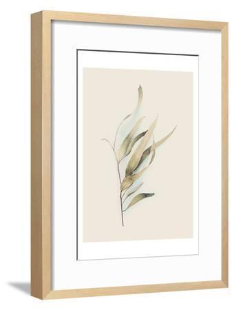 Gum Leaves-Urban Epiphany-Framed Art Print
