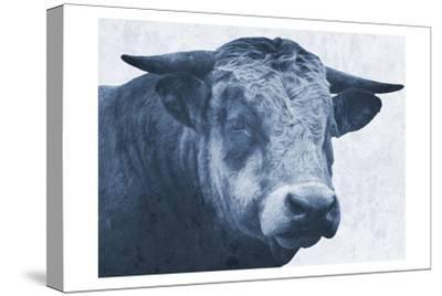 Tone And Tonal Bull-Sheldon Lewis-Stretched Canvas Print