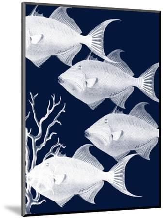 Coastal Orchestra-Sheldon Lewis-Mounted Art Print