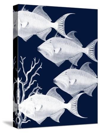 Coastal Orchestra-Sheldon Lewis-Stretched Canvas Print