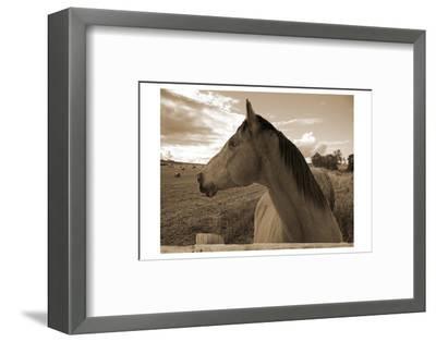 Ranch-Sheldon Lewis-Framed Photographic Print