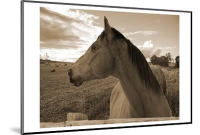 Ranch-Sheldon Lewis-Mounted Photographic Print