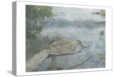 Sitting Duck-Sheldon Lewis-Stretched Canvas Print