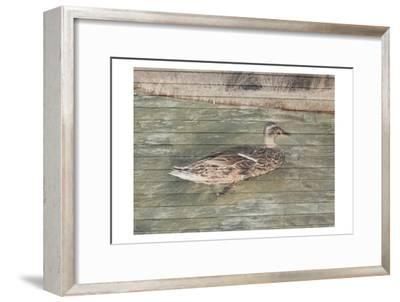 Water Duck-Sheldon Lewis-Framed Art Print