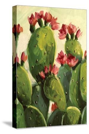 Cactus-Boho Hue Studio-Stretched Canvas Print