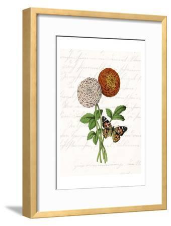 Dahlia 2-Kimberly Allen-Framed Art Print