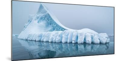 Icebergs floating in the Southern Ocean, Antarctic Peninsula, Antarctica-Panoramic Images-Mounted Photographic Print