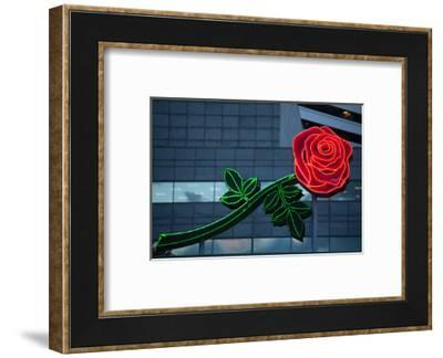 Neon rose, Waterfront Park, Portland, Oregon, USA-Panoramic Images-Framed Photographic Print