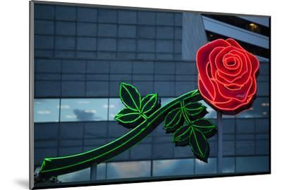 Neon rose, Waterfront Park, Portland, Oregon, USA-Panoramic Images-Mounted Photographic Print