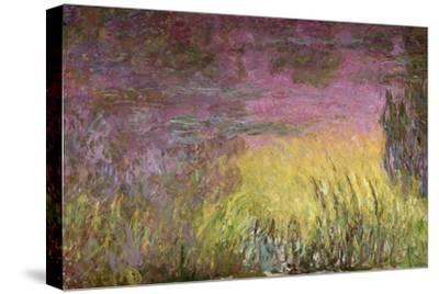 Waterlilies at Sunset, 1915-26-Claude Monet-Stretched Canvas Print