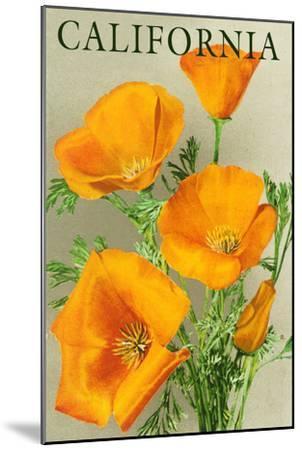 California - Poppies-Lantern Press-Mounted Premium Giclee Print