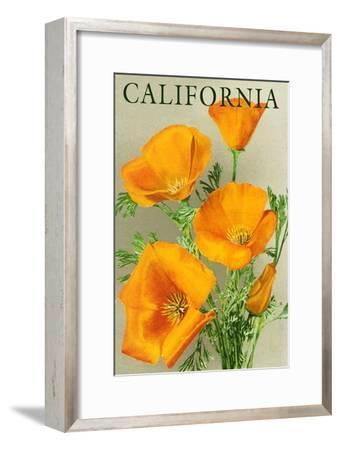 California - Poppies-Lantern Press-Framed Premium Giclee Print