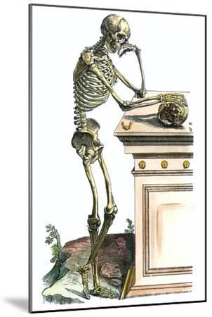 Vesalius: Skeleton, 1543-Andreas Vesalius-Mounted Giclee Print
