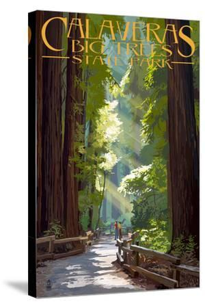 Calaveras Big Trees State Park - Pathway in Trees-Lantern Press-Stretched Canvas Print