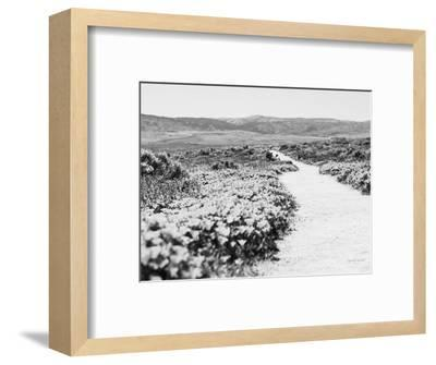 Road Trip VI Crop-Elizabeth Urquhart-Framed Photographic Print