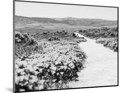 Road Trip VI Crop-Elizabeth Urquhart-Mounted Photographic Print