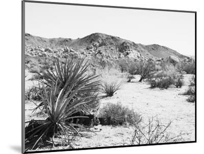 Road Trip II Crop-Elizabeth Urquhart-Mounted Photographic Print