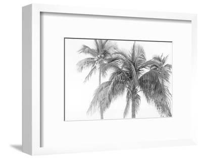 Breezy IV-Elizabeth Urquhart-Framed Photographic Print