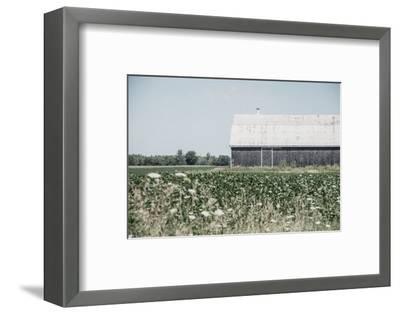 Weathered I-Elizabeth Urquhart-Framed Photographic Print