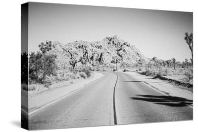 Road Trip I-Elizabeth Urquhart-Stretched Canvas Print