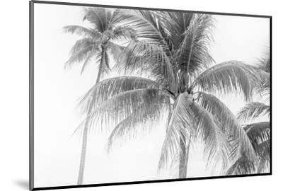 Breezy II-Elizabeth Urquhart-Mounted Photographic Print