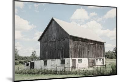 Weathered IV-Elizabeth Urquhart-Mounted Photographic Print