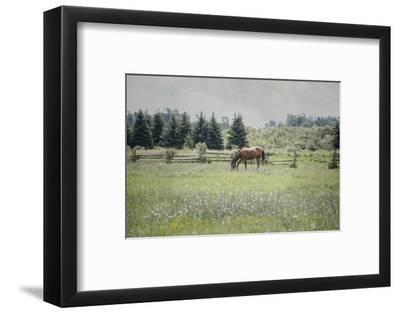 Sun Drenched II-Elizabeth Urquhart-Framed Photographic Print