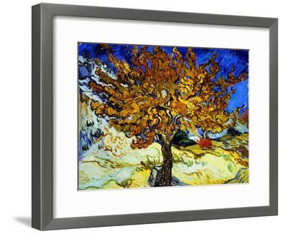Mulberry Tree, c.1889-Vincent van Gogh-Framed Giclee Print