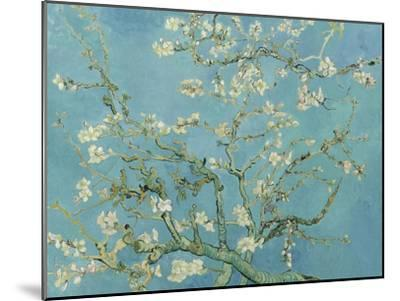 Almond Blossom, 1890-Vincent van Gogh-Mounted Giclee Print