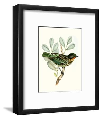 On Perch I-0 Unknown-Framed Art Print
