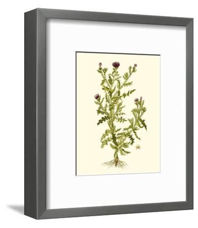 Olive Greenery II-0 Unknown-Framed Art Print