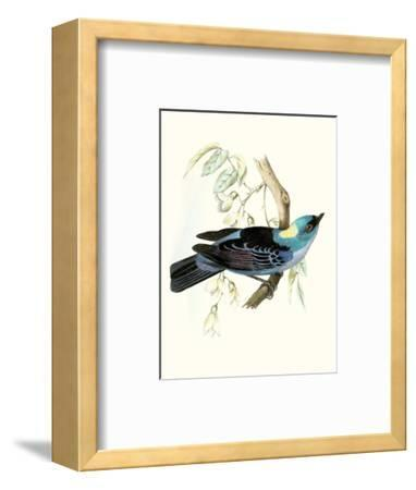 On Perch VII-0 Unknown-Framed Art Print