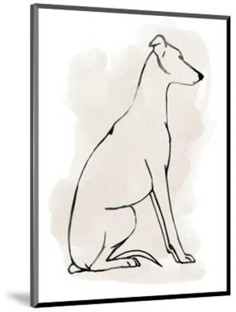 Greyhound Sketch I-Grace Popp-Mounted Art Print