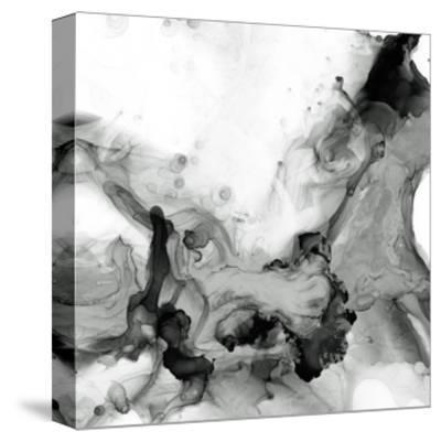 Ebony Plume II-Jennifer Goldberger-Stretched Canvas Print