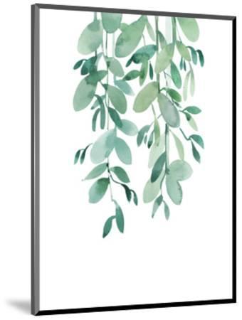 Eucalyptus-A.V. Art-Mounted Art Print