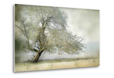 Tree in Field of Flowers-Mia Friedrich-Metal Print