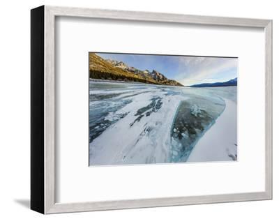 Methane ice bubbles under clear ice on Abraham Lake near Nordegg, Alberta, Canada-Chuck Haney-Framed Photographic Print