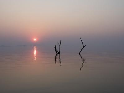 Africa, Zimbabwe, Matusadona National Park. Reflections on Lake Kariba.-Jaynes Gallery-Framed Photographic Print