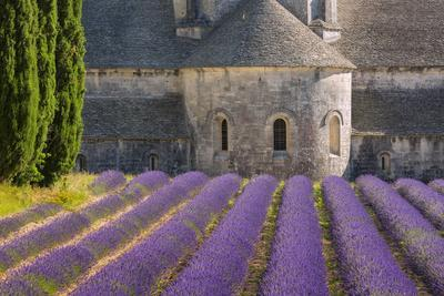 France, Provence. Lavender field and Senanque Abbey.-Jaynes Gallery-Framed Photographic Print