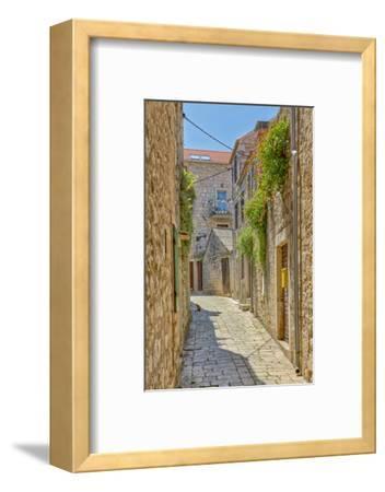 Croatia, Stari Grad. Cat in town street.-Jaynes Gallery-Framed Photographic Print