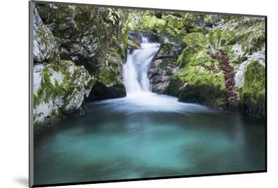 Slovenia. Small stream of pure mountain water cascades down mossy rocks.-Brenda Tharp-Mounted Photographic Print